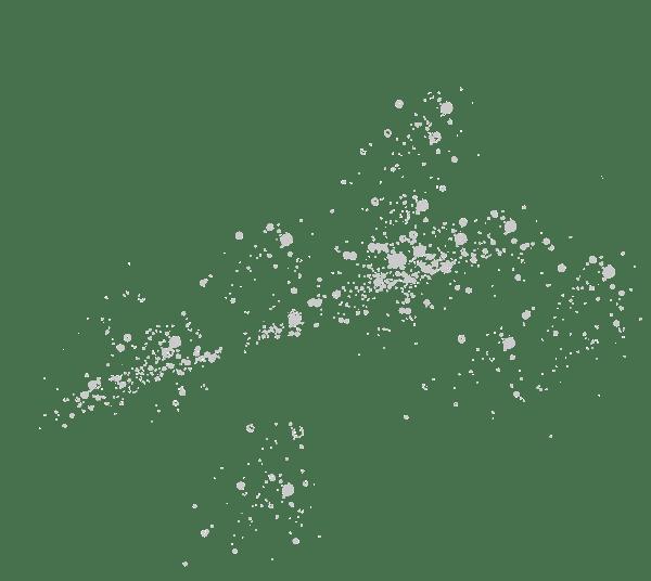 paillette Haut-Bergeron grands vins de sauternes et Graves